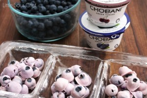 LSC-Frozen-Greek-Yogurt-Blueberries-IMG_6530